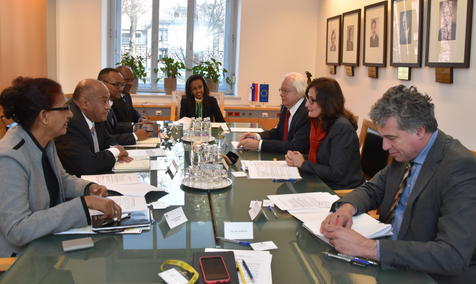 Bilateral political consultations between Slovenia and Ethiopia