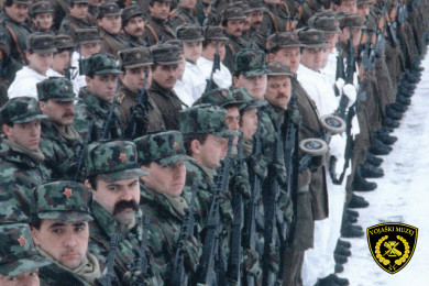 Vojaki stojijo v vrsti.