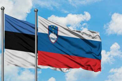 Slovenska in estonska zastava plapolata. V ozadju modro nebo z oblaki.